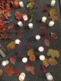 Glaveylichter mit Herbstlaub